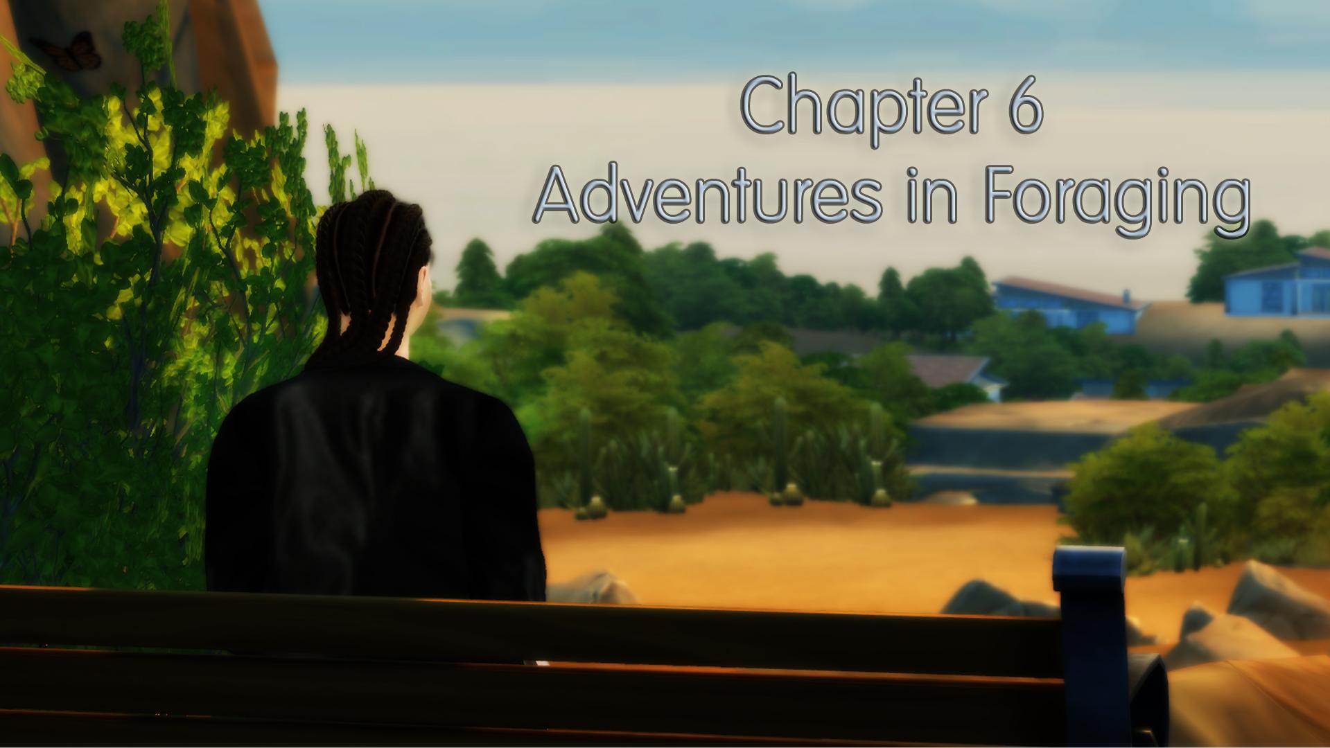 1 adventures in foraging