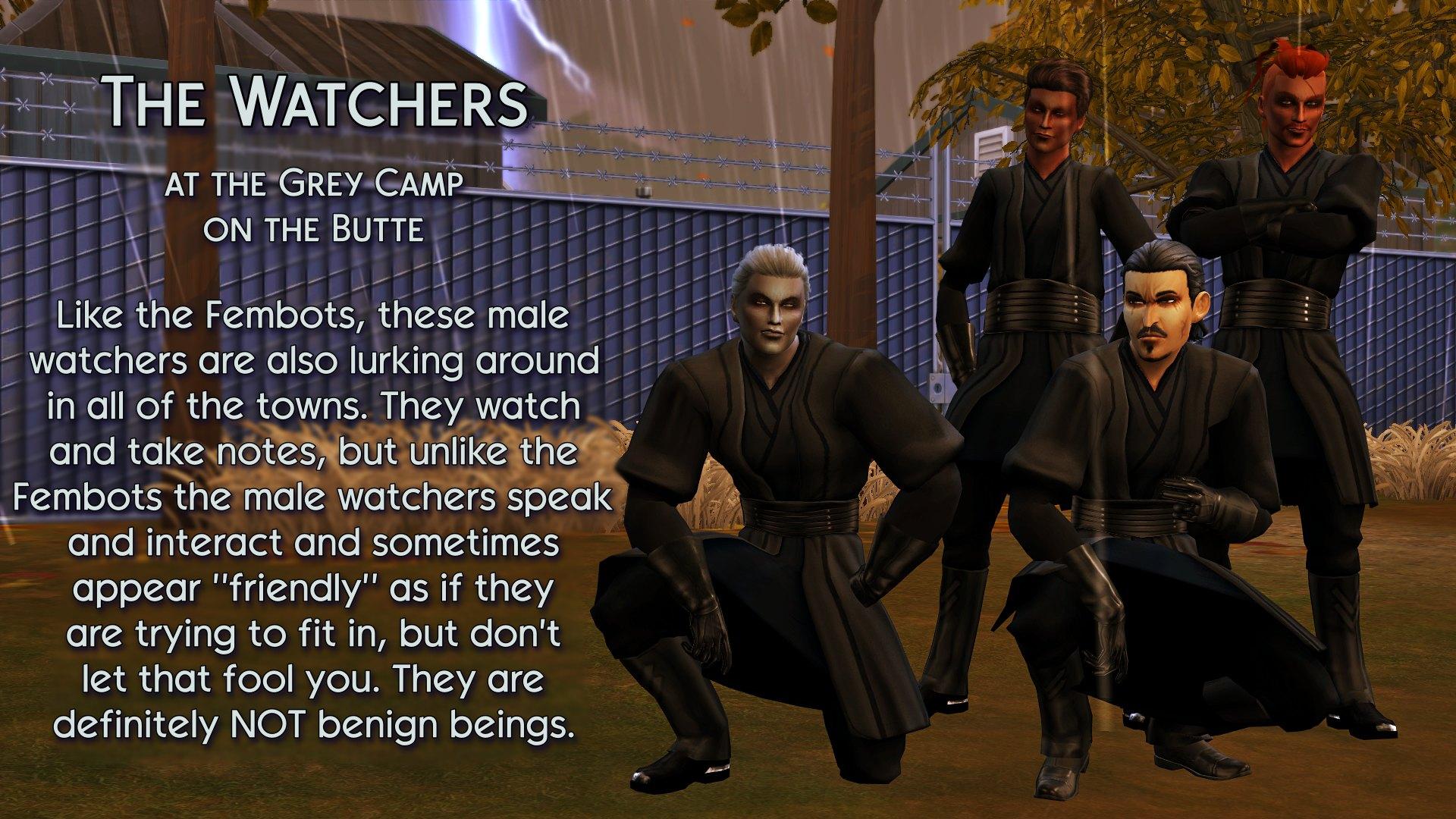 14 The Watchers