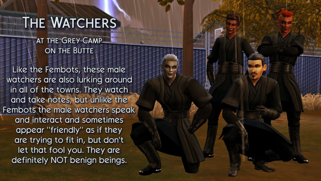 14 The Watchers